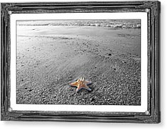 Topsail Island The Lone Star Acrylic Print by Betsy Knapp