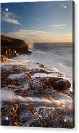 Acrylic Print featuring the photograph Panther Beach - Torment  by Francesco Emanuele Carucci
