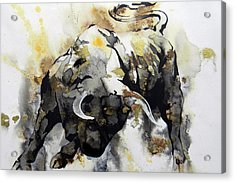 Toro 2 Acrylic Print