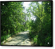 Acrylic Print featuring the photograph Toronto Trails by Shawn Dall