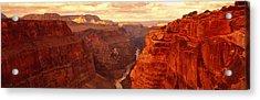 Toroweap Point, Grand Canyon, Arizona Acrylic Print