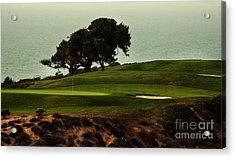Torrey Pines Golfcourse Acrylic Print