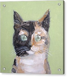 Tortie Cat Acrylic Print