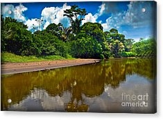 Tortuguero River Canals Acrylic Print by Gary Keesler