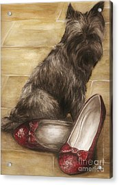 Toto Acrylic Print by Meagan  Visser