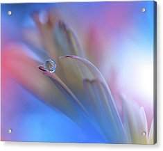 Touch Me Softly... Acrylic Print