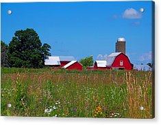 Acrylic Print featuring the photograph Touch Of Color by Dave Files