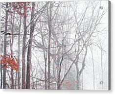 Touch Of Fall In Winter Fog Acrylic Print