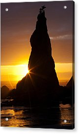 Touch Of Hope Acrylic Print