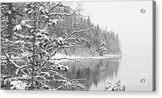 Touch Of Winter Acrylic Print