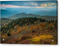 Touch Of Yellow Acrylic Print