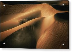 Touch The Wind Acrylic Print