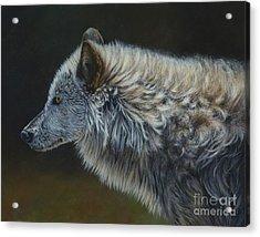 Touchable Acrylic Print