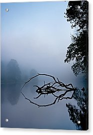 Touche Acrylic Print by Tom Cameron