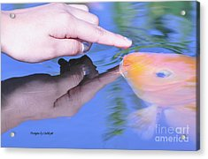 Touching The Koi.  Acrylic Print by Debby Pueschel