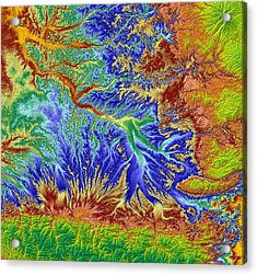 Toulouse France Map Art Acrylic Print by Paul Hein
