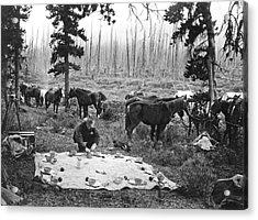Tourist Horseback Camp Lunch Acrylic Print by Underwood Archives
