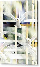 Towards Freedom Acrylic Print by Gun Legler