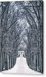 Towards The Lonely Path Of Winter Acrylic Print by Evelina Kremsdorf