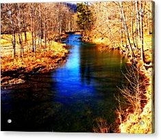 Town Creek Acrylic Print by Mary Beth Landis