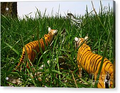 Toy Tiger Hunt Acrylic Print