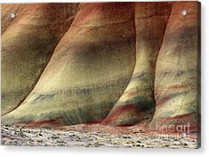 Traces Of Life Acrylic Print by Mike  Dawson