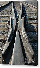 Tracks Acrylic Print by Dan Holm