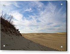 Acrylic Print featuring the photograph Tracks In The Sand Trail by Gregg Southard