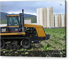 Tractor At Spreckels Acrylic Print