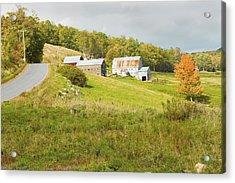 Traditional Maine Farm On Side Of Hill Canvas Poster Prints Acrylic Print