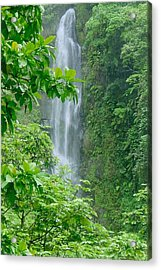 Trafalger Falls Acrylic Print by Robert Nickologianis
