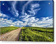 Trail Drive Road Acrylic Print by Jean Hutchison