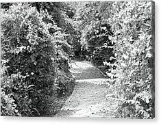 Trail In Black And White Acrylic Print by Carolyn Ricks