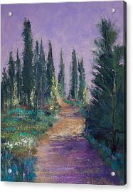 Trail In The Woods Acrylic Print by David Patterson