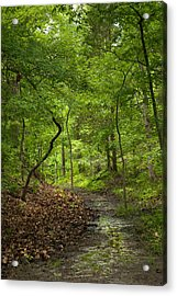 Trail Of Tears Mantle Rock Entrance Acrylic Print