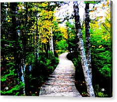 Trail To Autumn Acrylic Print by Zinvolle Art