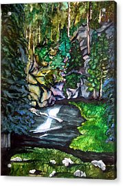 Trail To Broke-off Acrylic Print by Lil Taylor