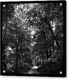 Trail To Love Acrylic Print