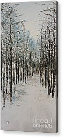 Trail To The Wood Lot Acrylic Print by Steve Knapp