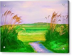 Tralee Ireland Water Color Effect Acrylic Print by Tom Prendergast