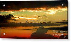Sunset 1 Acrylic Print by Ze  Di