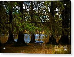 Tranquil And Serene Acrylic Print by Peggy Franz