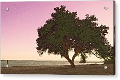 Tranquil Florida Bay Acrylic Print by Glenn McCarthy Art and Photography