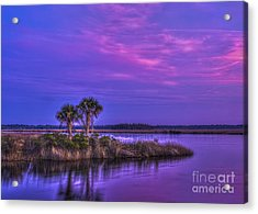 Tranquil Palms Acrylic Print by Marvin Spates