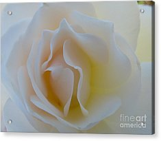 Tranquility  Acrylic Print by Anat Gerards