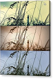 Transitions Acrylic Print by Laurie Perry