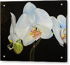 Acrylic Print featuring the painting Translucent Orchids by Sandra Nardone