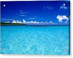 Transparent Interminably Acrylic Print