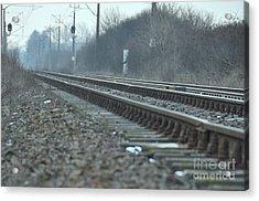 Transsiberian Path Acrylic Print