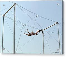 Trapeze School Acrylic Print by Brian Wallace